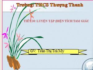 Bài giảng Hình học Lớp 8 - Tiết 30: Luyện tập Diện tích tam giác - Năm học 2017-2018 - Trần Thị Trà My